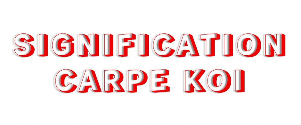 Signification de la Carpe Koi